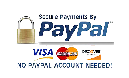 Rent a Robot with PayPal